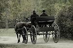 A buckboard buggy at a Civil War Reenactment at the Wade House Greenbush Wisconsin