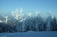 Mt. Tremblant, Winter, Ski Trip, Frozen Mountain, Powder<br />