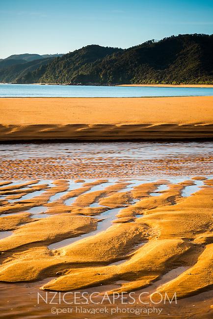Sunrise on golden beach in Totaranui with sand patterns after high tide, Abel Tasman National Park, Nelson Region, New Zealand