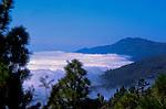 Mist and cloud over the forests of Caldera de Taburiente, La Palma, Canary Islands, Spain