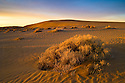 Sand dunes in Christmas Lake Valley, southeast Oregon.