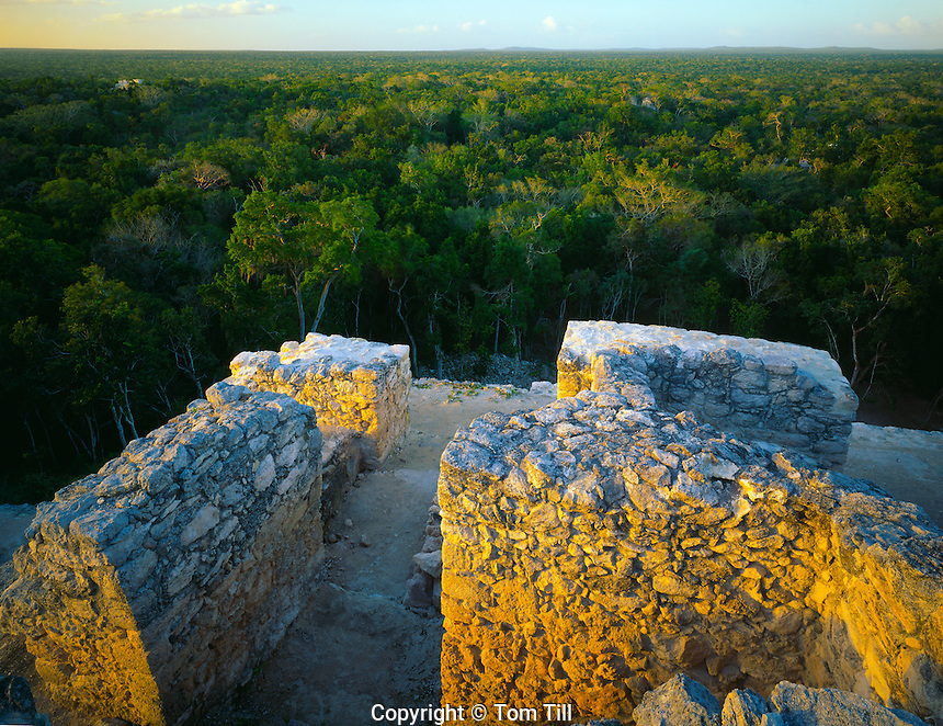 Great Pyramid at Calakmul (Temple 2) Calakmul Biosphere Reserve Campeche State, yucatan, Mexico Mayan Temple 100-900 AD Largest pre-Columbian structure 45 H