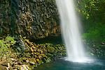 Log exposure detail of Alai Waterfall against columnar basalt, West Sumatra