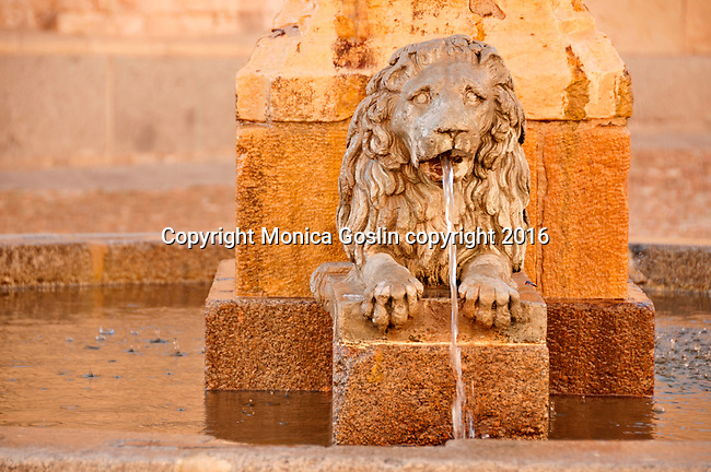 Fountain with a stone lion in Plaza de Medina del Campo