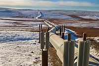 Trans Alaska Oil Pipeline traverses the tundra of Alaska's Arctic, north of the Brooks mountain range.