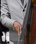 Musican's hand playing the bass