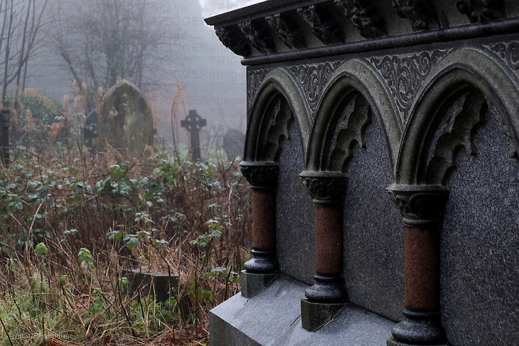 Misty graveyard