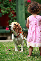 13 July 2008:  Two year old toddler Maya Gabriella Jaramillo plays in the back yard wearing a summer dress  next to Chuck a 3 year old beagle bassett hound dog.  Mother is caucasion white American woman, father is a Mexican immigrant from Chiapas.  Mutli- Racial Family. This young girl is biracial.