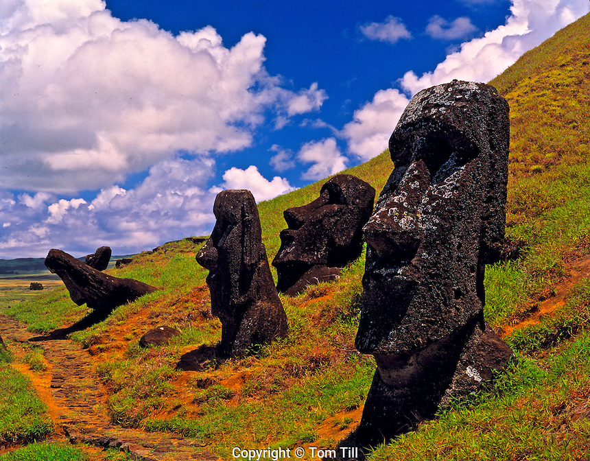 Moai statues at Rano Raraku, Easter Island, Chile