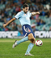 Sydney FC Sasa Ognenovski during his A-League match against Perth Glory in Sydney, April 13, 2014. Photo by Daniel Munoz/VIEWPRESS EDITORIAL USE ONLY