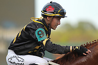 HOT SPRINGS, AR - MARCH 18: Luis Contreras aboard Love That Lute #9 after winning the 6th race at Oaklawn Park on March 18, 2017 in Hot Springs, Arkansas. (Photo by Justin Manning/Eclipse Sportswire/Getty Images)