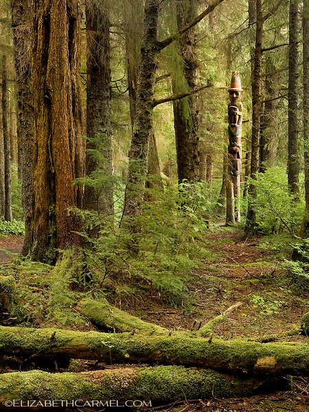 Rainforest Totem