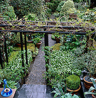 View from a first floor window over the pergola and pebbled path in this lushly planted London garden