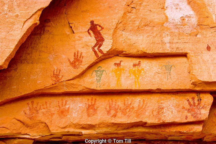 The Quail Panel, Grand Gulch, Utah, Proposed San Juan/Anasazi Wilderness, Ancient Native American rock paintings