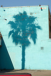 The shadow of a palm tree falls on a rundown turqouise wall in Hollywood.