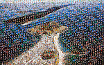 Photo Mosaics