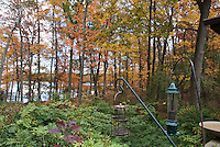Tree fall autumn foliage, rhododendron and wisteria vine, hanging bird feeders, with lake water in background