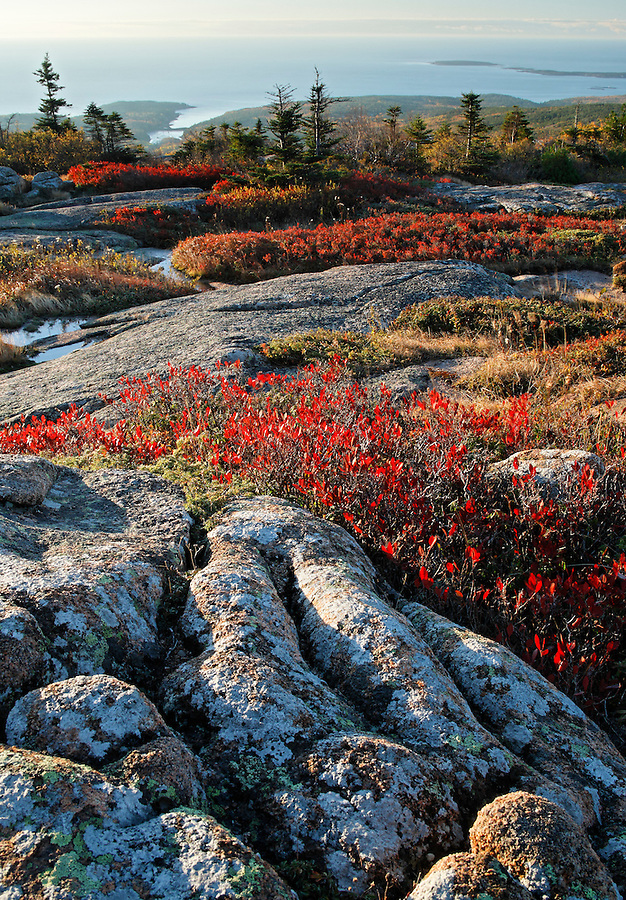 View from Cadillac Mountain during an autumn sunrise, Acadia National Park, Hancock County, Maine, USA