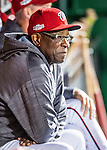 13 October 2016: Washington Nationals Manager Dusty Baker looks out from the dugout prior to Game 5 of the NLDS against the Los Angeles Dodgers at Nationals Park in Washington, DC. The Dodgers edged out the Nationals 4-3, to take Game 5 of the Series, 3 games to 2, and move on to the National League Championship Series against the Chicago Cubs. Mandatory Credit: Ed Wolfstein Photo *** RAW (NEF) Image File Available ***