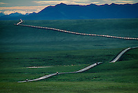 Thin ribbon of humanity flows north across the tundra along Alaska's Dalton Highway; nearby, the trans-Alaska pipeline carries Prudhoe Bay oil south 800 miles to the port of Valdez. ..The road, built for the pipeline, is known as the &quot;haul road&quot; for the trucks carrying supplies as the pipeline was built. The Alaska pipeline runs through BLM land above the Yukon River and Brooks Range, and originally cost $8 billion in 1977.