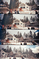 big bear in winter