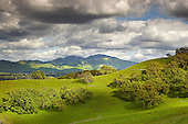 Billowing cumulus clouds build up on a spring afternoon following a storm, Mount Diablo, California, USA