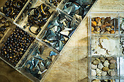 Details of designs and raw material like shark teeth for use in jewelry of Mexican Designer, Sara Beltran is seen in her studio in Jaipur, Rajasthan, India.