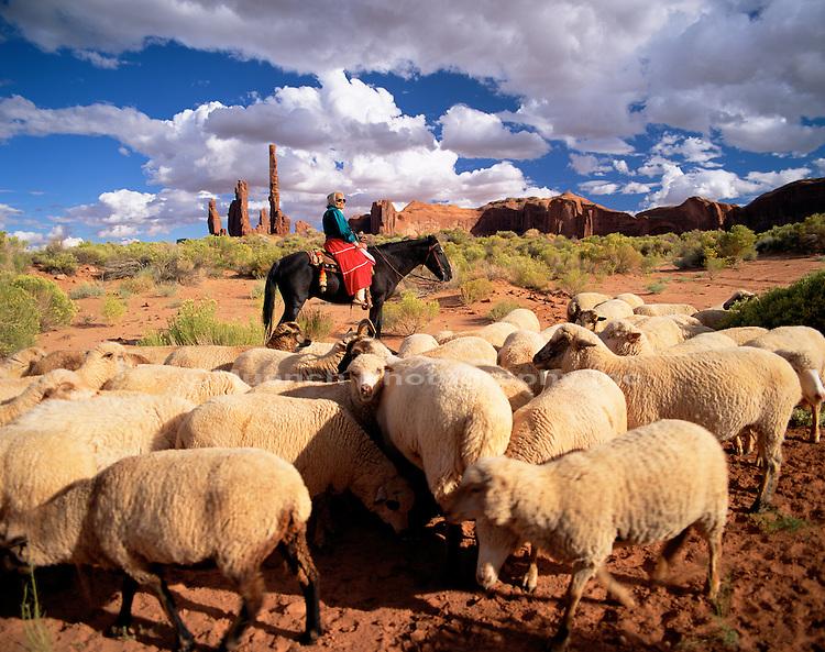 Navajo Lady herding sheep Monument Valley Navajo Tribal Park  ARIZONA