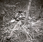A photo of a badly decomposed and dead Korean soldier taken by a member of the Second Infantry Division shows the seriousness of a war which killed over 54,000 U.S. service men in just three years. These are photos of the 2nd Infantry Division in the Korean War in 1950 or 1951.