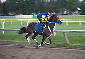 Rachel Alexandra and exercise rider Dominic Terry put in final prep at dawn on Aug. 31 for the Grade 1 Woodward Stakes at Saratoga.
