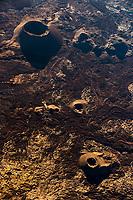 France, île de la Réunion, Parc national de La Réunion, classé Patrimoine Mondial de l'UNESCO, Les Hautes Plaines, le Piton de la Fournaise, cratères et évents dans l'enclos Fouqué (vue aérienne) // France, Reunion island (French overseas department), Parc National de La Reunion (Reunion Nationa