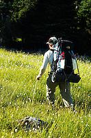 Man hiking through meadow near Cream Lake, Bailely Range, Olympic Mountains, Olympic National Park, Washington