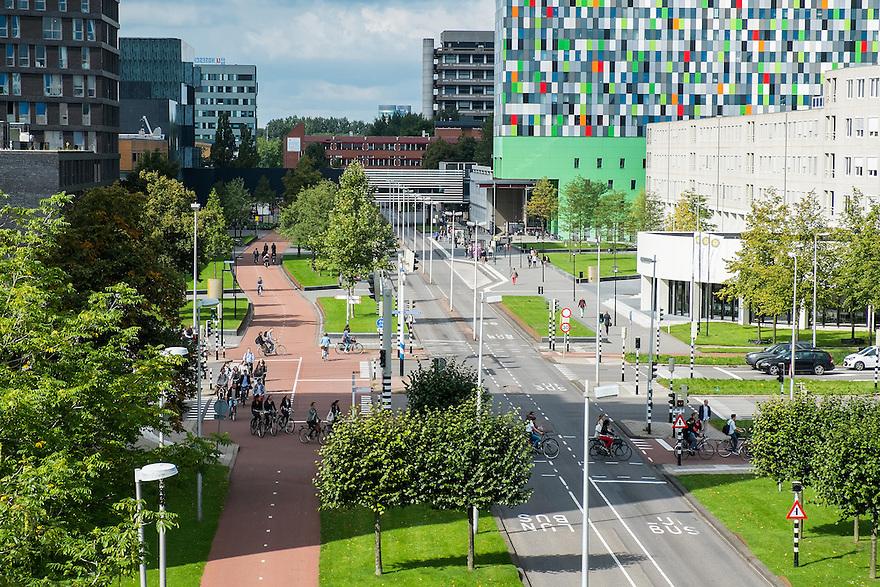 Nederland, Utrecht, 1 sept 2014<br /> De Uithof, de campus van de Universiteit van Utrecht. Universiteitsgebouwen, hogescholen en studentencomplexen worden doorsneden door brede fietspaden en busbanen. <br /> Foto (c) Michiel Wijnbergh