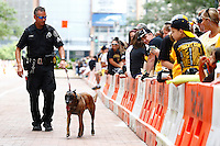 Crowds gather along Grant Street while a K-9 unit patrols prior to the start of the Pittsburgh Penguins Stanley Cup victory parade in downtown Pittsburgh, Pennsylvania on June 15, 2016. (Photo by Jared Wickerham / DKPS)