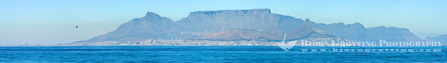 From Robben Island in Table Bay off the coast of Cape Town, South Africa. Panorama of the mainland.