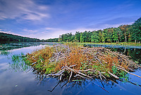 Beaver Lodge, Stokes State Forest, New Jersey
