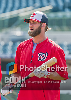 20 March 2015: Washington Nationals outfielder Bryce Harper awaits his turn in the batting cage prior to a Spring Training game against the Houston Astros at Osceola County Stadium in Kissimmee, Florida. The Nationals defeated the Astros 7-5 in Grapefruit League play. Mandatory Credit: Ed Wolfstein Photo *** RAW (NEF) Image File Available ***