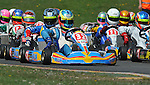 Stars, Junior Max, Rowrah, DHR, George Williams.