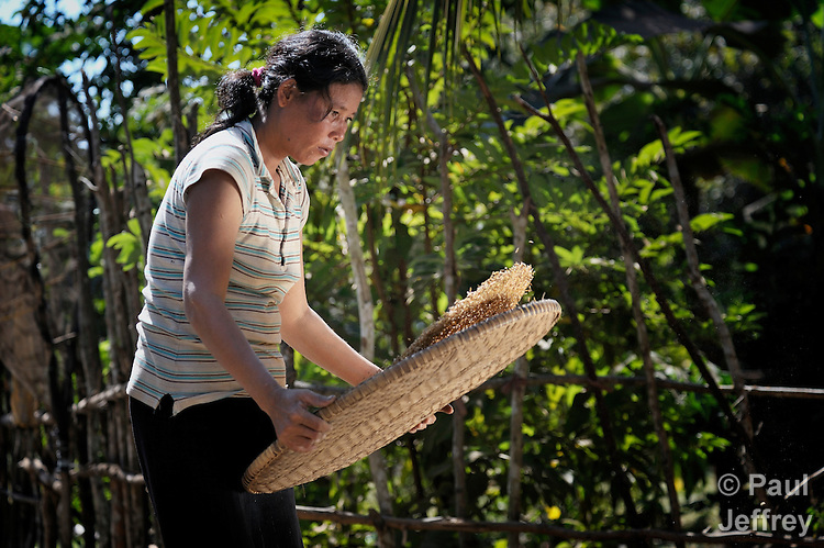 A woman winnows rice in the Cambodian village of Somrith.