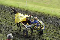 DRAFSPORT: JOURE: Harddraverij en Renvereniging Joure, 13-07-2012, Swipedei, draverij Fjouwer fan e Jouwer, winnaar Willem Steur met het paard Wammes (#5), ©foto Martin de Jong