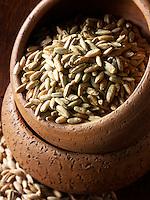 Rye Grains