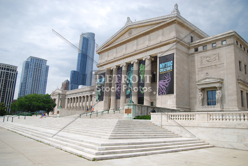 download the field museum - photo #15