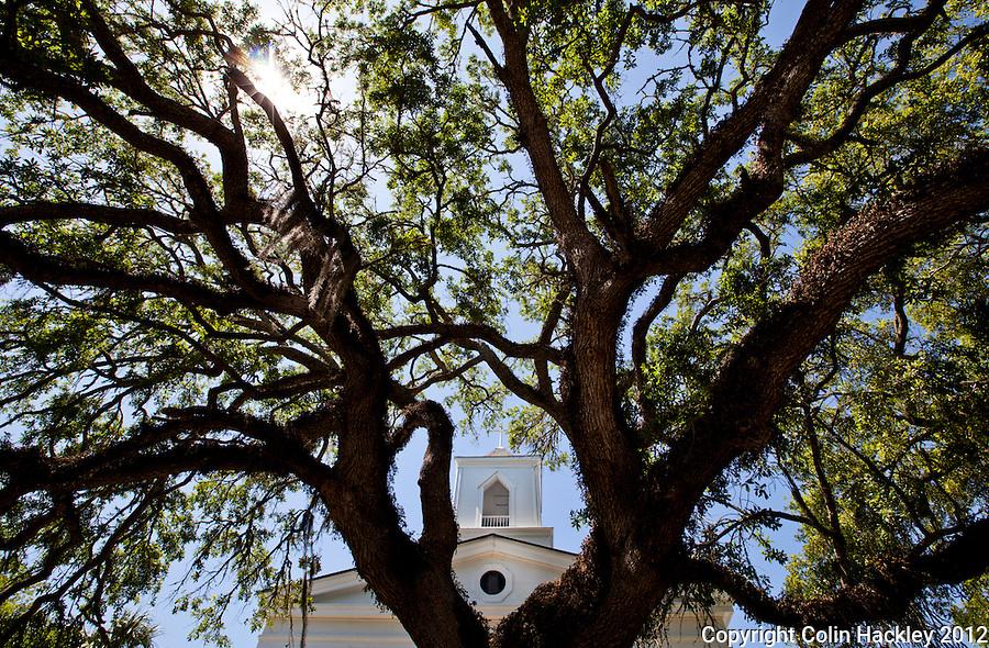 Beneath spreading Live Oak branches, Trinity Episcopal Church has served Apalachicola since 1838..COLIN HACKLEY PHOTO