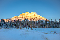 The sun's first rays of light engulf the entire peak of Cascade Mountain on an extremely chilly morning in Banff National Park in mid-January. The temperatures hovered around -24°F/-31°C. The surrounding valley and forest edges showed some wolf sign in the snow and a few elk were seen off in the distance.
