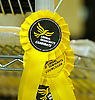 Liberal Democrats Spring Conference 7th-9th March 2014