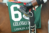 HOT SPRINGS, AR - APRIL 15: Lookin At Lee #6 silks before the running of the Arkansas Derby at Oaklawn Park on April 15, 2017 in Hot Springs, Arkansas. (Photo by Justin Manning/Eclipse Sportswire/Getty Images)