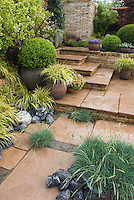Steps to house made beautiful with Acorus, shrubs, Euonymus, ornamental grass, containers