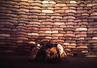 "June 1975, Mozambique --- Cashew Nut Factory of ""Cajuca"" --- Image by © JP Laffont"