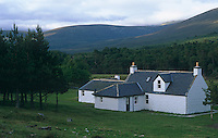 Ward Denton - Scotland