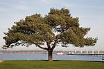 Hythe, Southampton